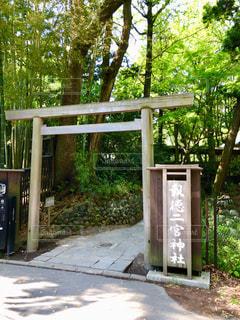 報徳二宮神社の写真・画像素材[2091400]