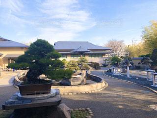 盆栽美術館の写真・画像素材[2953759]