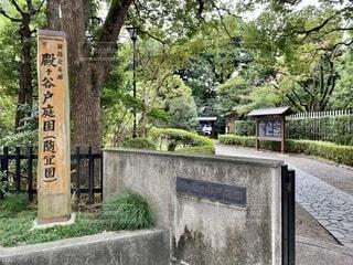 殿ヶ谷戸庭園の写真・画像素材[3861680]