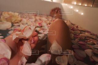 スレンダーの写真・画像素材[371154]