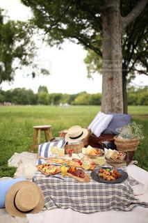 近くにピクニック用のテーブルの上の写真・画像素材[1269576]