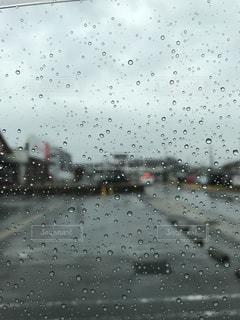 雨の写真・画像素材[340426]