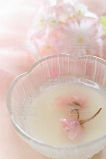 手つくり桜ゼリーと杏仁豆腐の二色菓子の写真・画像素材[1037875]