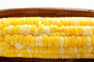 トウモロコシの写真・画像素材[1052232]