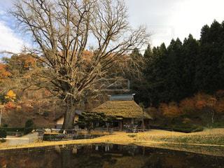 風景 - No.334668
