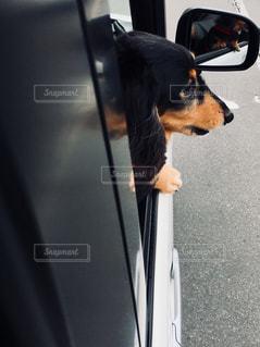 ドライブの写真・画像素材[969736]