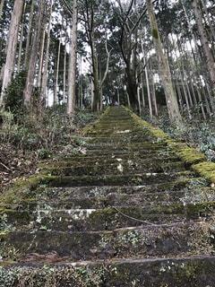 No.335688 神社