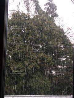#初雪 #雪 #街 - No.337302