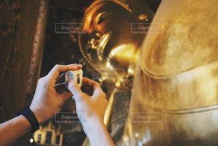 タイの写真・画像素材[335716]