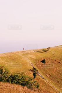 大室山の写真・画像素材[1131800]