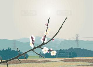 風景 - No.362532