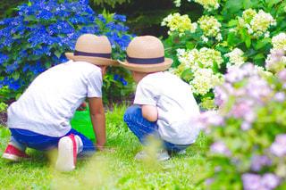 庭の人々のグループの写真・画像素材[2310251]