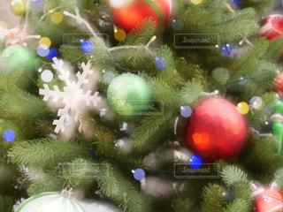 クリスマス ツリー - No.917046