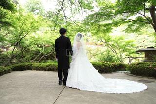 女性,男性,2人,カップル,後ろ姿,結婚式,ウェディングドレス,夫婦,結婚,お庭,5月