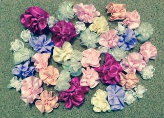 花の写真・画像素材[339980]