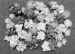 花の写真・画像素材[339981]
