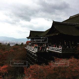 清水寺の写真・画像素材[338489]