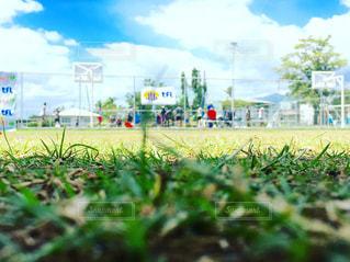 風景 - No.341632