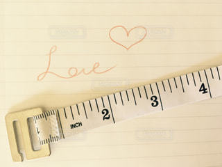 LOVEの写真・画像素材[342241]