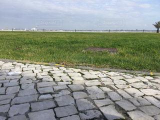 石畳越しの芝生の写真・画像素材[1096170]