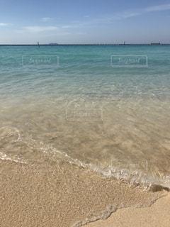海の写真・画像素材[339729]