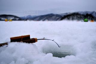 冬の写真・画像素材[339877]