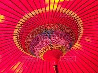 傘の写真・画像素材[341439]