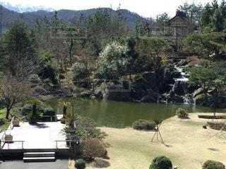 庭の写真・画像素材[340614]