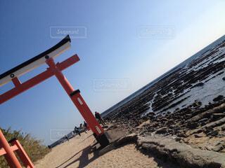 海の写真・画像素材[341452]
