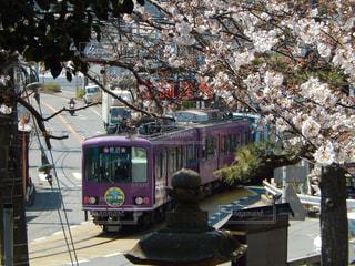 桜 - No.432261