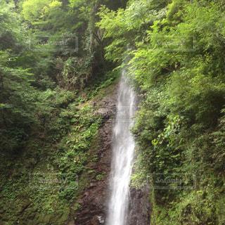 滝 - No.341378