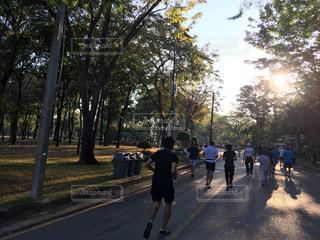公園の写真・画像素材[341505]