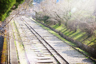 春の陽気の写真・画像素材[1067067]