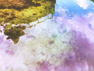 海の写真・画像素材[357249]