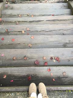 秋の足音。の写真・画像素材[341981]