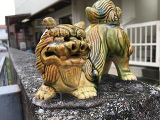 沖縄の写真・画像素材[342026]