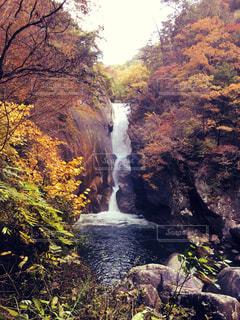 秋の山。の写真・画像素材[345544]