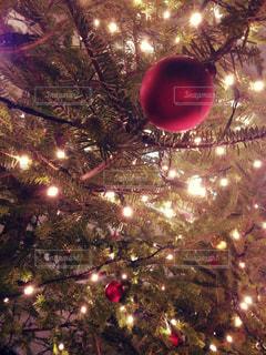 クリスマス。 - No.345605