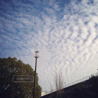 風景の写真・画像素材[498326]