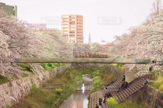 風景 - No.361492