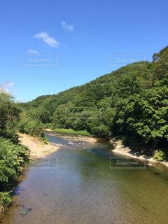 きれいな川の写真・画像素材[719680]