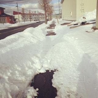 雪道の写真・画像素材[2774381]