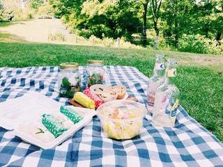おしゃれピクニックと手作りランチの写真・画像素材[1672031]