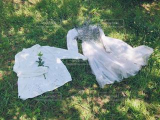 草原の上の白いシャツとワンピースの写真・画像素材[2394538]