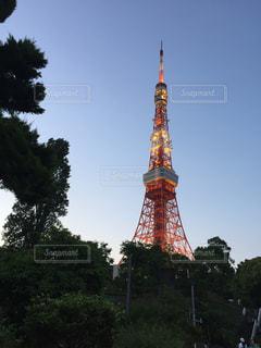 東京タワーの写真・画像素材[346737]