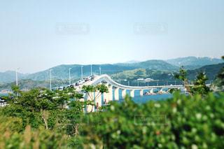 角島大橋の写真・画像素材[519035]
