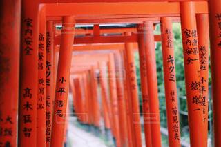 根津神社の写真・画像素材[778918]