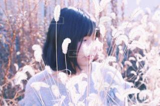 秋ポートレートの写真・画像素材[812103]