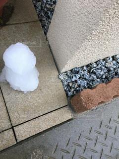 雪遊びの写真・画像素材[343666]