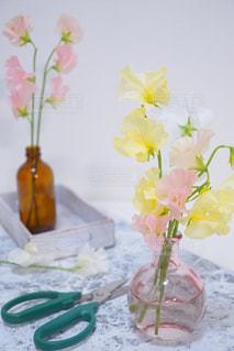 春の写真・画像素材[412223]